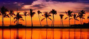 Resultado de imagem para beach paradise