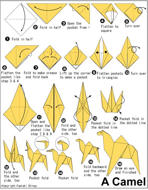 project 01 origami camel origami pinterest