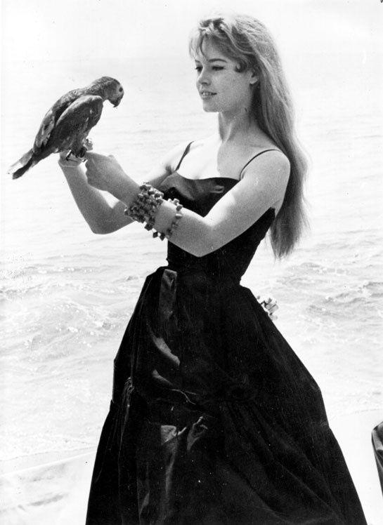 Brigitte Bardot lors du Festival de Cannes en 1956 http://www.vogue.fr/mode/inspirations/diaporama/la-petite-robe-noire-habille-les-stars-1/8142/image/527784#brigitte-bardot