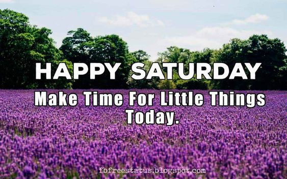 Happy Saturday, make time for little thing today, Good Morning.