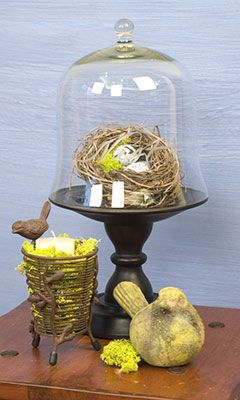 cloche and a birds nest with eggs
