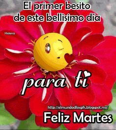 El Mundo de los Gifs: Feliz martes (ver más...)