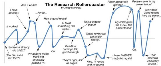 The research rollercoaster