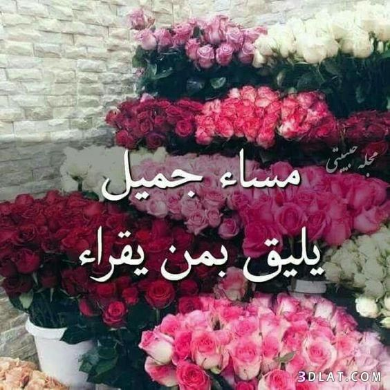 مسجات مسائية بالصور 2019 مساء الخير 3dlat Com 27 18 B654 Good Morning Images Flowers Good Morning Greetings Night Wishes