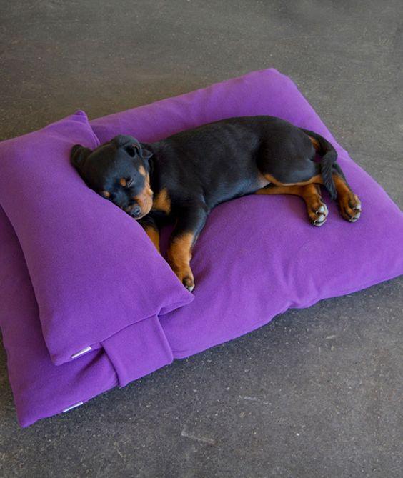 Hundekissen mit Kopfkissen. Dog cushion with head pillow. Dog bed from pet-interiors.de