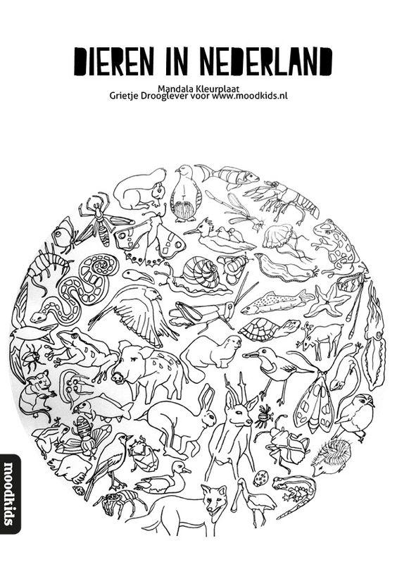 mandala dieren kleurplaat gratis coloring
