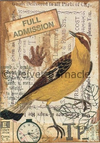 Original ACEO Mixed Media Collage Ornithology by VelvetBarnacle, £9.99