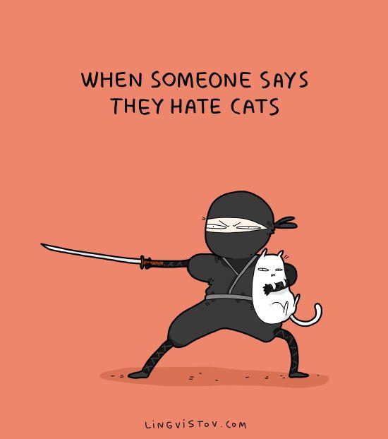 Cat Haters Beware.....  dude has cat allergy......  bye