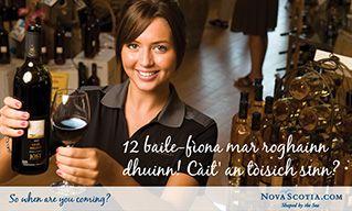 Gaelic Postcard - 12 wineries to chose from. Where do we begin? - Nova Scotia