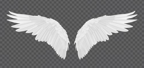 Vector Realistic Angel Wings Isolated On Transparent Background Sponsored Angel Realistic Vect Angel Wings Pictures Angel Wings Vector Angel Wings Png