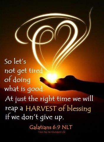 Galatians 6:9 ~ So let's not get tired of doing what is good, at just the right time we will reap a harvest of blessing if we don't give up...: