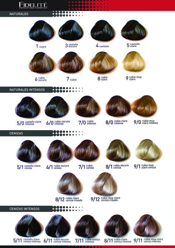 Carta de colores color master 01 tinturas de pelo - Muy mucho catalogo pdf ...