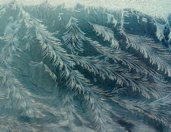 Winter 2008, Nova Scotia