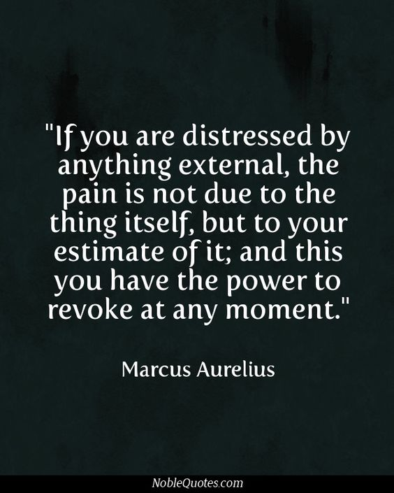 """""""If you are distressed by anything external, the pain is not due to the thing itself, but to your estimate of it; and this you have the power to revoke at any moment."""" ~ Marcus Aurelius"""