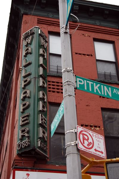 pitkin girls Living in america: the jewish experience  the dramatic loew's pitkin theater on pitkin avenue between legion  girls would re-do their makeup .