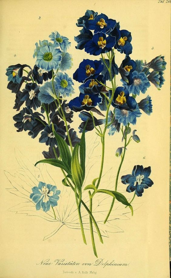 Delphiniums flower and white satin on pinterest for Botanic fleurs artificielles