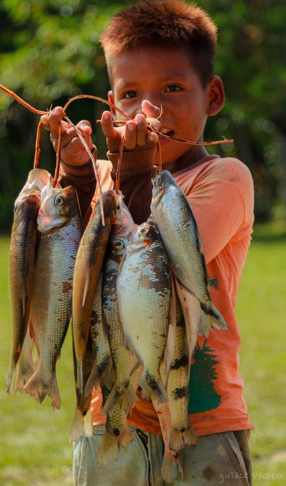 Ticuna Tribe in Solimões River, Amazon Rainforest, Brazil. Wow- fresh caught fish
