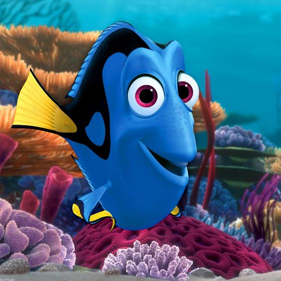 finding nemo quotes - Google Search