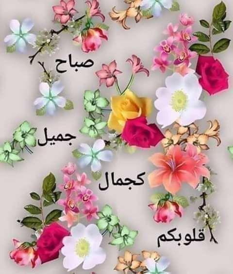 أجمل صباح الورد 20 رسالة صباحية رائعة Good Morning Images Flowers Beautiful Morning Messages Good Morning Flowers