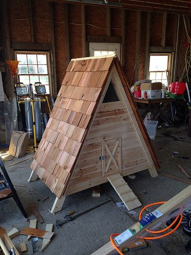 Duck house ducks and duck coop on pinterest for How to build a duck pen