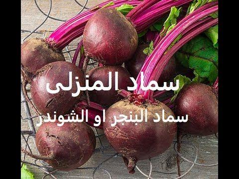 سماد منزلى منقوع بنجر وكركاية Home Fertilization Errors حلقة 341 Plants Radish Vegetables