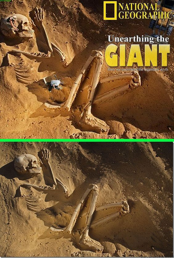 Nat Geo. Unearthing the Giant pic