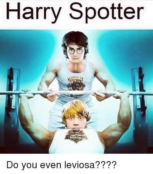 Pin By Jay Holcomb On Make My Kids Go Ha Ha Harry Potter Memes Hilarious Harry Memes