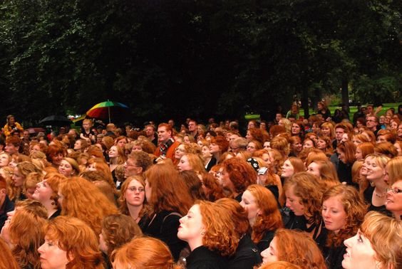 WHAT the hell is this?! A fricken redhead convention!?
