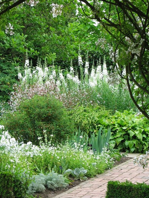 Sissinghurst's lovely 'white garden'. I bet it almost glows at dusk.: