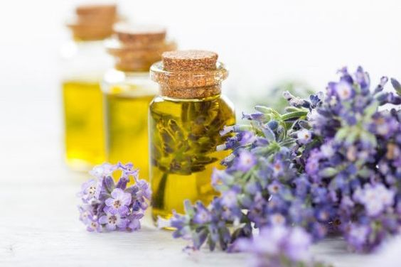 The benefits of gardening include having gorgeous blooming flowers and fresh delicious fruits and vegetables throughout the growing season. However, sore muscles and inflamed joints may accompany your efforts. Using the right essential oils can do wonders to restore your body and mind. As you are deciding which oils to use, keep in mind the […]