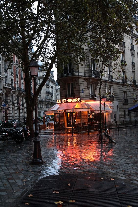I spent many a happy hour here at St Andre, Saint-Germain des Près, Paris, around the corner from my apartment.