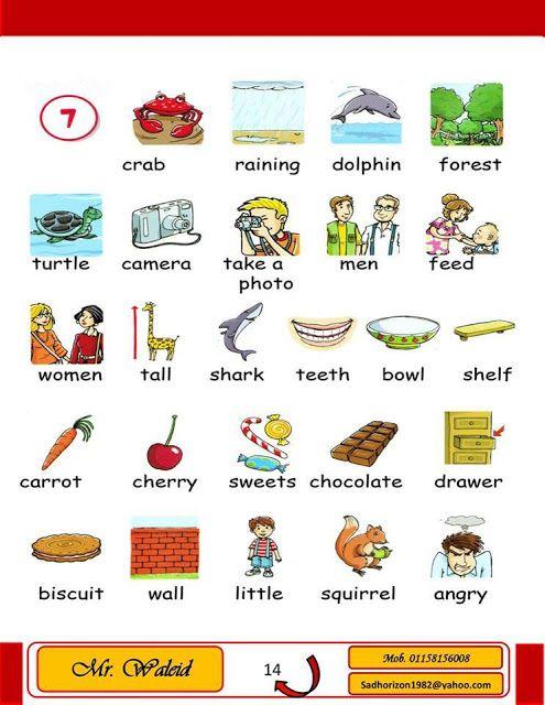 قاموس مصور للاطفال لتعلم الانجليزية وتقوية قاموس الانجليزية للطفل Shark Teeth Squirrel Man Photo