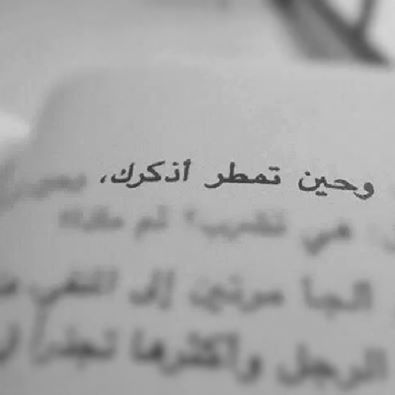 صور مطر خلفيات أمطار وشتاء جميلة تعبر عن البرد Love Quotes Wallpaper Quotes For Book Lovers Wise Words Quotes