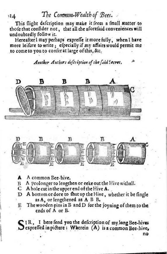 samuel-hartlib-the-reformed-common-wealth-of-bees-1655-ruche-tronc.jpg (571×866)