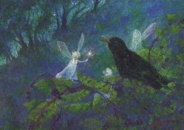 Amsel und Elf Postkarte