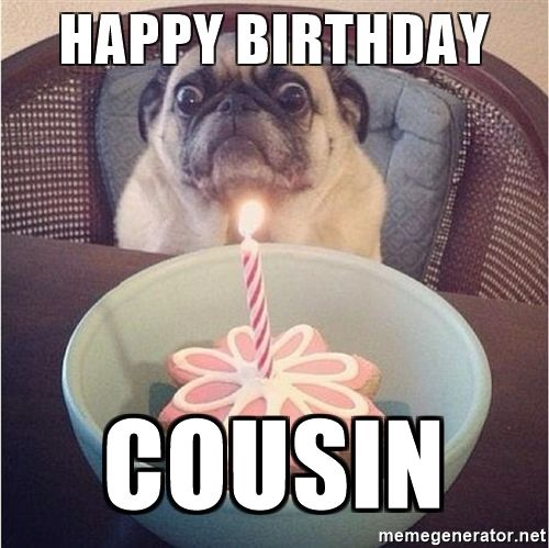 15 Best Happy Birthday Memes For Your Favorite Cousin Sayingimages Com Happy Birthday Cousin Happy Birthday Cousin Meme Happy Birthday Meme