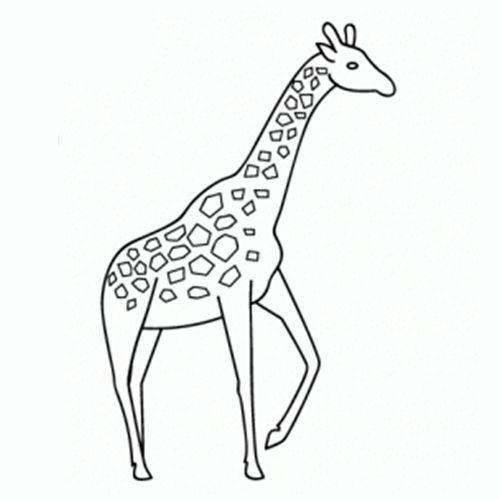 Como Dibujar Una Jirafa Como Dibujar Animales Como Dibujar Aprender A Dibujar Animales