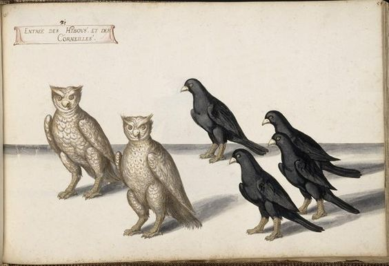 Theatre costume designs by Daniel Rabel 1620s, owls and crows.