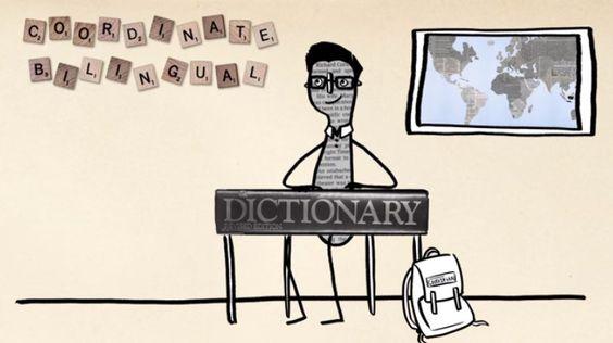 Coordinate Bilinguals: Hier wird eine zweite Sprache, zum Beispiel im Jugendalter, nach der Muttersprache erlernt. Deshalb verbindet der coordinate bilingual mit Wörtern aus verschiedenen Sprachen auch verschiedene Konzepte.