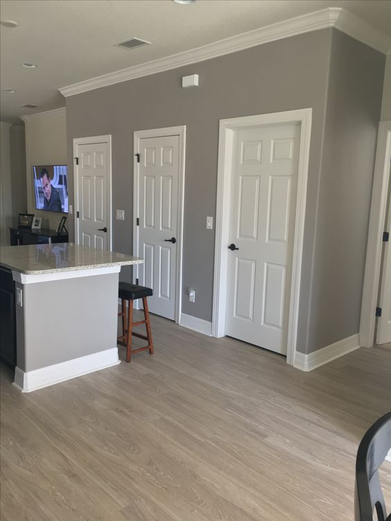 The Colors I Used Are Sherwin Williams Functional Gray SW 7024 For Walls And Extra White 7006 Trim