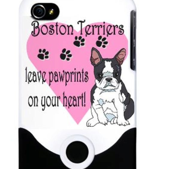 Pitter, patter of paw prints....Boston Terriers