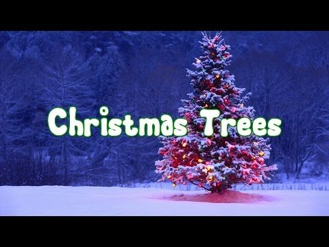 An Educational Video For Kids This Video Provides A Brief History Of The Christmas Tree From It Christmas Trees For Kids Modern Christmas Tree Christmas Tree