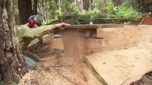 Risultati immagini per turning a tree into lumber using a homemade Alaskan Mill