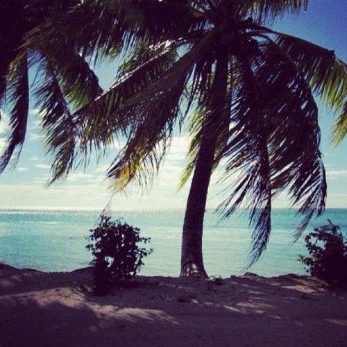 Moorea, Polynesia