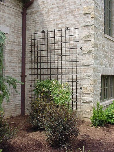 Large scale decorative iron trellis for a house wall for Contemporary garden trellis designs