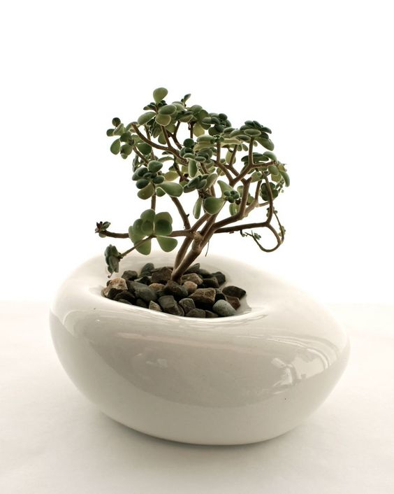 Small Sculptural Planter by LandMstudio on Etsy, $65.00 // Minimalist Style