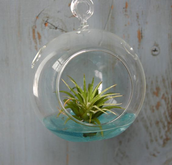 Hanging Orb Terrarium filled with colorful sea glass by freeravin, $18.00