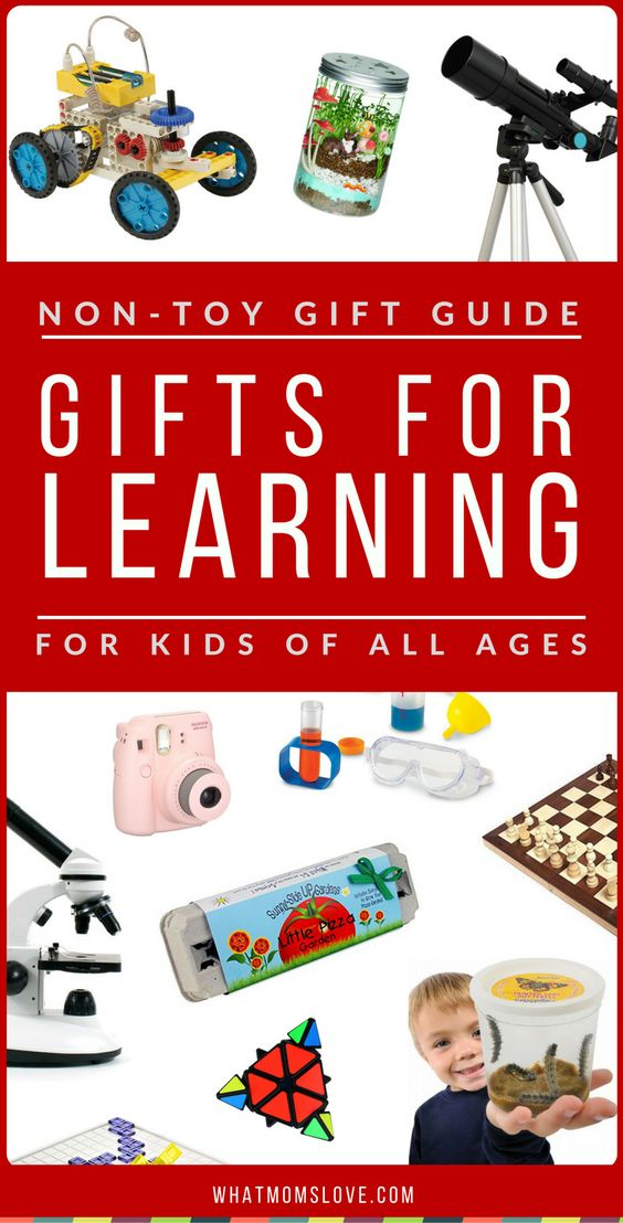 Toys For Boys To Learn From : Non toy gift guide gifts for learning expanding horizons