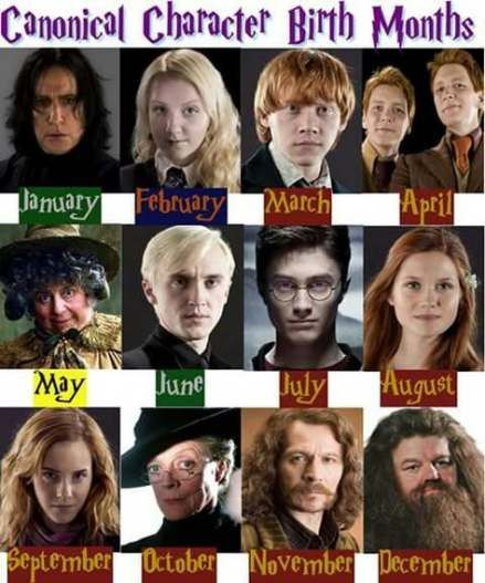 Quotes Funny Birthday Harry Potter 19 Best Ideas Harry Potter Quiz Harry Potter Puns Harry Potter Characters
