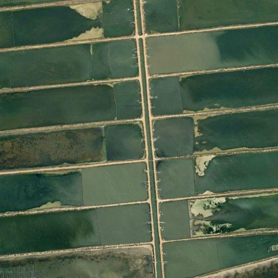Los patrones de diseño en la Tierra vistos por Google Earth